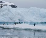 antarctica_20101223_img_1427