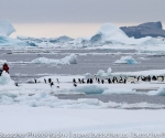 antarctica_20101223_img_7011