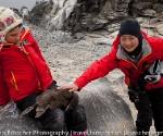 antarctica_20101223_img_8358
