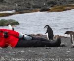 antarctica_20101221_img_3803