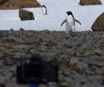 antarctica_20101222_img_4614