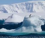 antarctica_20101222_img_5553
