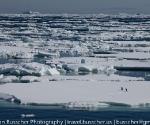 antarctica_20101222_img_7999