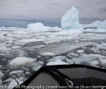 antarctica_20101225_img_9398-2