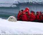 antarctica_20101225_img_9576