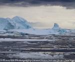 antarctica_20101225_img_9676