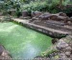 bandhavgarh-1697