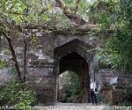 bandhavgarh-1746