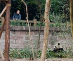 panda_base-20110206-img_3726