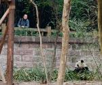 panda_base-20110206-img_3726