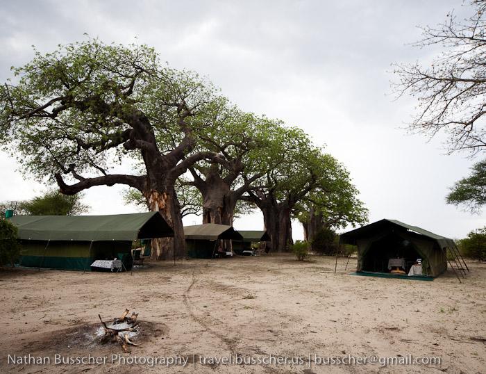 Tarangire camp site