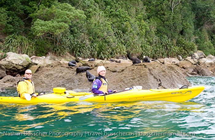 Kayaking and Hiking in Abel Tasman